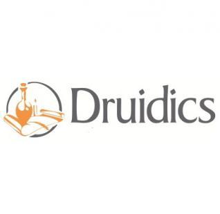 Druidics, Soluciones Informáticas