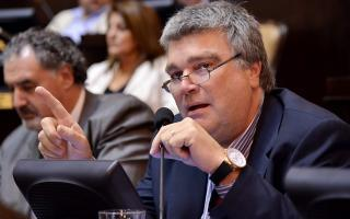 """Díaz admitió que los resultado de las PASO """"no fueron los esperados""""."""