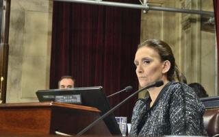 Michetti ratificó su postura contra la despenalización del aborto.