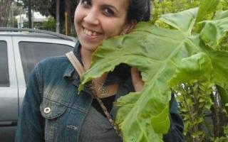Paula González, la docente imputada.