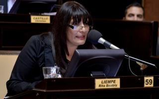 Rita Liempe (Unidad Popular) presentó el proyecto.