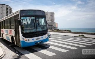 Costa atlántica: La línea 221 anuncia nuevas tarifas a partir de este viernes