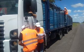 Senasa controló más de 500 transportes en distintas rutas de la Provincia