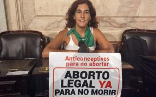 Nathalia Gonzalez mostró uno de los carteles desde su bancada.