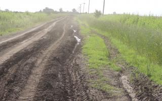 Caminos rurales en deplorable estado imposibilitan el retiro de la cosecha.