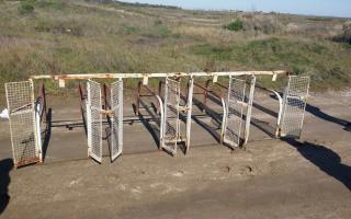 Operativo contra carrera de galgos en Carhué: Hay 4 detenidos