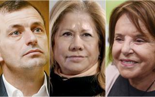 """Elecciones 2019: Por secciones, quiénes encabezan las listas de """"Consenso Federal"""""""