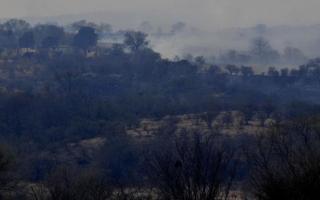 Bosques enteros quedaron consumidos por el fuego. Foto: La Voz