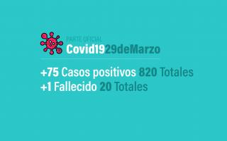 Parte Oficial 29 de marzo - Coronavirus en Argentina