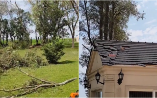 La tormenta también afectó la casa del diputado Marcos Di Palma en Arrecifes