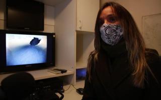 Malena Galmarini supervisó operativo de inspección con buzos