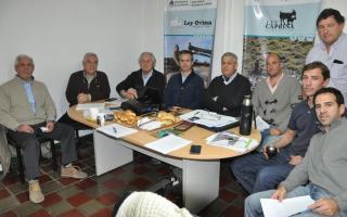 Provincia aprobó 18 proyectos de producción ovina.
