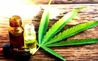 Cannabis medicinal en La Madrid: Salud aprobó proyecto de investigación