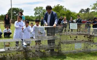Liberan a 600 aves silvestres que iban a ser destinadas al mascotismo
