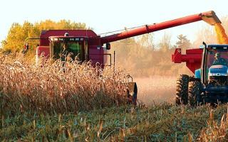 Gobierno estima la mejor cosecha en la historia argentina