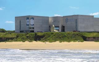 El MAR de Mar del Plata se suma a la Noche de los Museos