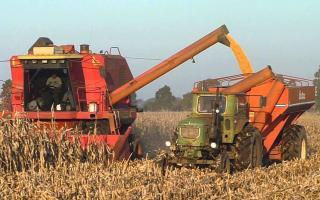 La superficie aumentó un 3,4% al lograr 2,54 millones de hectáreas. Foto: Prensa