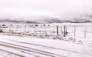 Nieve en Provincia: Qué dice el Servicio Meteorológico Nacional
