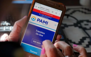 """PAMI: """"Digitalizamos la mayoría de los trámites y el uso de las plataformas  aumentó de manera exponencial"""", dijo Volnovich   LaNoticia1.com"""