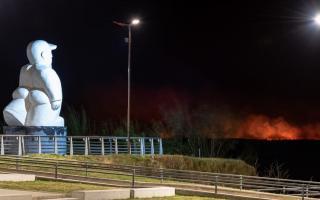 """""""Los incendios en las islas se tienen que terminar"""", exigió Passaglia"""