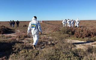 Encuentran más restos óseos en el lugar donde hallaron un cadáver