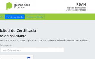 Certificado de Deudores Morosos en Provincia: Avanzan en simplificar el trámite