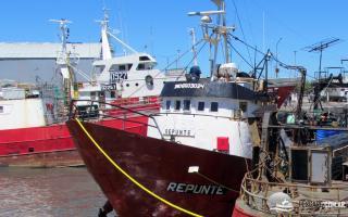 """""""El Repunte"""": Diputados nacionales sesionarán en Comisión de Pesca en Mar del Plata"""