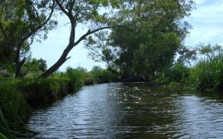 A las actuales 3000 hectáreas, se sumarán otras 1500 de la Reserva Natural Río Luján. Foto: Prensa