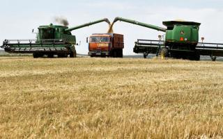 Sectores productivos del interior bonaerense no recibieron con agrado la medida del Gobierno