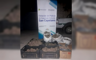 San Cayetano: Empleados municipales involucrados en robo de dos toneladas de papa de la comuna