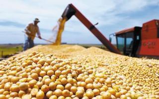 El gobierno nacional aumentó las retenciones al agro por decreto