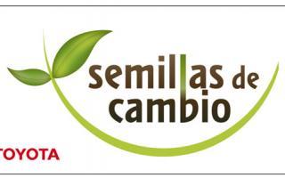 El Programa Semillas de Cambio de Toyota Argentina premió a la Escuela de Educación Secundaria 4 de San Pedro