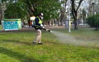 Fumigación en espacio públicos