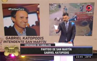 Montero le pidió a intendentes frenar el maltrato a caballos.