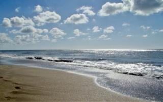 Los gesellinos podrán caminar por la playa