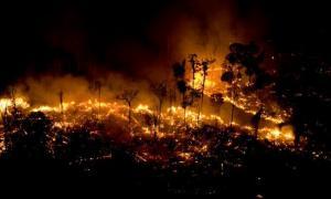 Las imágenes del incendio conmueven al mundo.