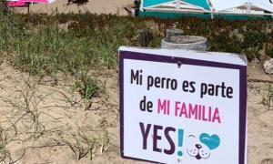 Playa Canina en Mar del Plata, la primera del país.