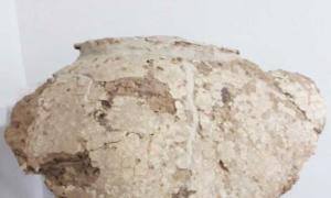 Se trata del gliptodonte encontrado por un grupo de trabajadores en 2016. Foto: Prensa