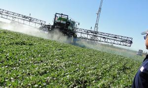 Provincia dio marcha atrás con resolución sobre aplicación de fitosanitarios