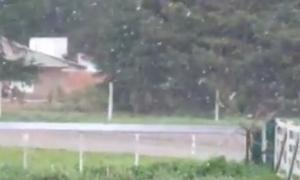 Video: Sorpresiva nieve de septiembre en Balcarce