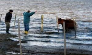 Bolívar sufre el drama de las inundaciones.