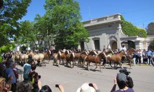 47º Fiesta Nacional del Caballo en Bragado.