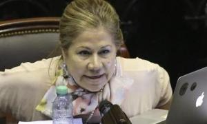 Camaño no descartó ser gobernadora por Consenso Federal 2030. Foto: Prensa