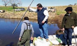 Ambos municipios han sufrido por el avance del agua, en los últimos meses. Foto: La Palabra de Daireaux