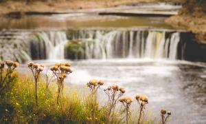 La cascada Cifuentes está ubicada en Coronel Dorrego