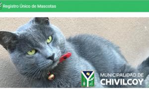 Chivilcoy: Presentaron el primer Registro Único de Mascotas de la Provincia