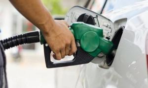 El Gobierno aplazó la suba de impuestos a los combustibles hasta el 12 de marzo