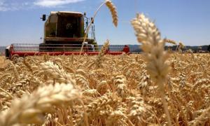 """""""La incertidumbre que genera esta medida en mitad de la campaña fina (trigo y cebada), se extenderá también a la futura campaña gruesa"""", alertaron desde Carbap."""