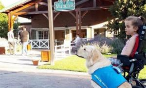 Violeta no pudo ingresar con su perra a Munchi's.