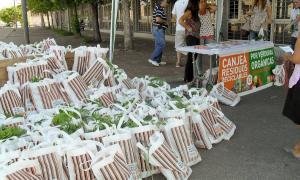 Residuos por un árbol: Nueva jornada de Ecocanje en Ituzaingó